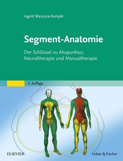 Segment-Anatomie von Wancura-Kampik,  Ingrid