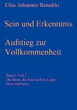 Sein und Erkenntnis von Benedikt,  Elias Johannes
