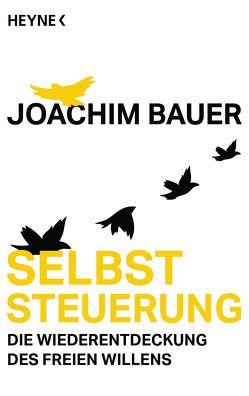 Selbststeuerung von Bauer,  Joachim