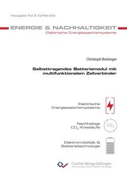 Selbsttragendes Batteriemodul mit multifunktionalem Zellverbinder von Bolsinger,  Christoph