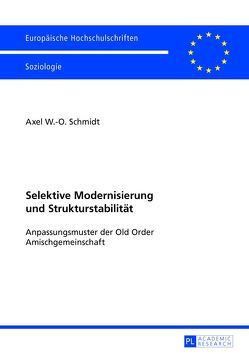 Selektive Modernisierung und Strukturstabilität von Schmidt,  Axel
