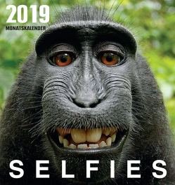 Selfies (2019) von Burckhardt,  Wolfram