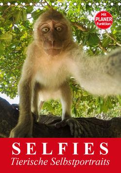 Selfies. Tierische Selbstportraits (Tischkalender 2020 DIN A5 hoch) von Stanzer,  Elisabeth