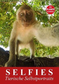 Selfies. Tierische Selbstportraits (Wandkalender 2018 DIN A3 hoch) von Stanzer,  Elisabeth