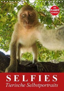 Selfies. Tierische Selbstportraits (Wandkalender 2018 DIN A4 hoch) von Stanzer,  Elisabeth
