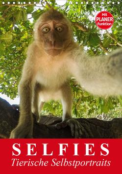 Selfies. Tierische Selbstportraits (Wandkalender 2020 DIN A4 hoch) von Stanzer,  Elisabeth