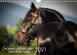 Seltene Kaltblüter – Rare Heavy Horses (Wandkalender 2021 DIN A4 quer) von Pixel Nomad,  The, Zahorka,  Cécile
