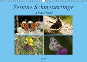 Seltene Schmetterlinge in Deutschland (Wandkalender 2018 DIN A3 quer) von Erlwein,  Winfried