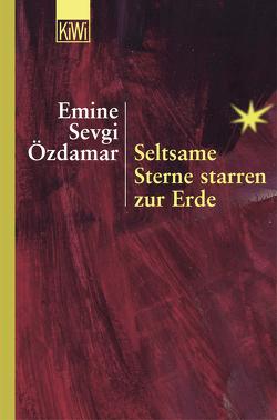 Seltsame Sterne starren zur Erde von Özdamar,  Emine Sevgi