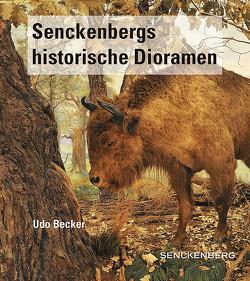 Senckenbergs historische Dioramen von Becker,  Udo, Scheersoi,  Annette