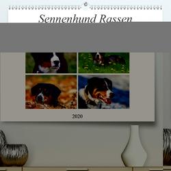 Sennenhund Rassen (Premium, hochwertiger DIN A2 Wandkalender 2020, Kunstdruck in Hochglanz) von SchnelleWelten