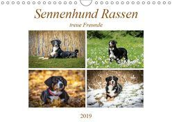 Sennenhund Rassen (Wandkalender 2019 DIN A4 quer) von SchnelleWelten