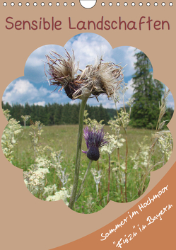 Sensible Landschaften , Sommer im Hochmoor (Wandkalender 2019 DIN A4 hoch) von Munir