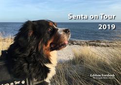 Senta on Tour 2019 – Fotokalender DIN A5 von Forsbach,  Beate