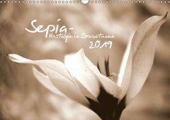 Sepia – Nostalgie in Brauntönen (Wandkalender 2019 DIN A3 quer) von tinadefortunata