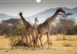 Serengeti – auf den Spuren eines Zoologen (Wandkalender 2020 DIN A4 quer) von Maaß,  Jürgen