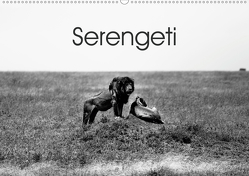 Serengeti – Tansanias Nationalpark in schwarz-weiß (Wandkalender 2020 DIN A2 quer) von #michaelsnapshot