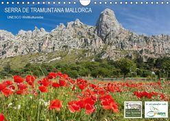 Serra de Tramuntana Mallorca (Wandkalender 2019 DIN A4 quer)