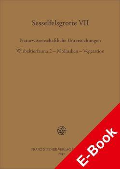 Sesselfelsgrotte VII von Freund,  Gisela, Richter,  Jürgen
