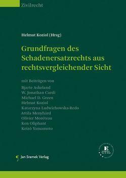 SET-Grundfragen des Schadenersatzrechts und Grundfragen des Schadenersatzrechts aus rechtsvergleichender Sicht von Koziol,  Helmut