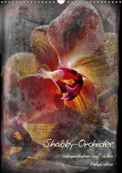 Shabby – Orchidee, Interpretation auf alten Fotoplatten (Wandkalender 2019 DIN A3 hoch)