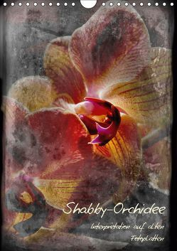 Shabby – Orchidee, Interpretation auf alten Fotoplatten (Wandkalender 2019 DIN A4 hoch)