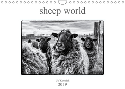 sheep world (Wandkalender 2019 DIN A4 quer) von Köpnick,  Ulf