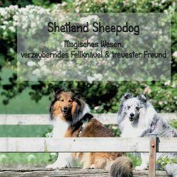 Shetland Sheepdog – Magisches Wesen, bezauberndes Fellknäuel und treuster Freund von Steuerwald,  Sissi