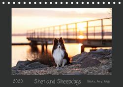 Shetland Sheepdogs Blacky, Anry, Mojo 2020 (Tischkalender 2020 DIN A5 quer) von Kudla,  Madlen