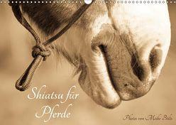 Shiatsu für Pferde – Photos von Meike Bölts (Wandkalender 2019 DIN A3 quer) von Bölts,  Meike