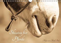 Shiatsu für Pferde – Photos von Meike Bölts (Wandkalender 2019 DIN A4 quer) von Bölts,  Meike