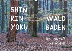 Shinrin yoku – Waldbaden 2019 (Wandkalender 2019 DIN A2 quer) von van der Wiel www.kalender-atelier.de,  Irma