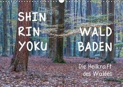 Shinrin yoku – Waldbaden 2019 (Wandkalender 2019 DIN A3 quer) von van der Wiel www.kalender-atelier.de,  Irma
