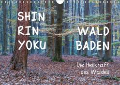 Shinrin yoku – Waldbaden 2019 (Wandkalender 2019 DIN A4 quer) von van der Wiel www.kalender-atelier.de,  Irma
