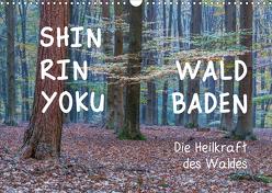 Shinrin yoku – Waldbaden 2020 (Wandkalender 2020 DIN A3 quer) von van der Wiel www.kalender-atelier.de,  Irma