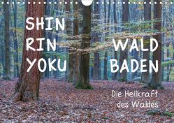 Shinrin yoku – Waldbaden 2021 (Wandkalender 2021 DIN A4 quer) von van der Wiel www.kalender-atelier.de,  Irma