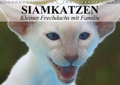 Siamkatzen – Kleiner Frechdachs mit Familie (Wandkalender 2018 DIN A4 quer) von Stanzer,  Elisabeth