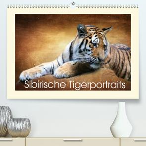 Sibirische Tigerportraits (Premium, hochwertiger DIN A2 Wandkalender 2021, Kunstdruck in Hochglanz) von Hultsch,  Heike
