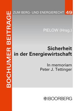 Sicherheit in der Energiewirtschaft von Pielow,  Johann-Christian