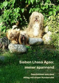 Sieben Lhasa Apso: immer spannend von Primig,  Birgit