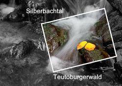 Silberbachtal Teutoburgerwald (Posterbuch DIN A4 quer) von Hobscheidt,  Ernst