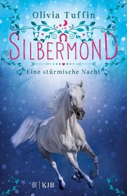 Silbermond: Eine stürmische Nacht von Eisold-Viebig,  Angelika, Tuffin,  Olivia
