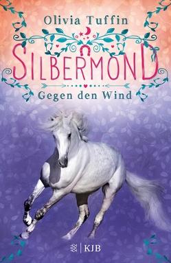 Silbermond: Gegen den Wind von Eisold-Viebig,  Angelika, Tuffin,  Olivia