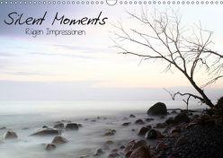 Silent Moments (Wandkalender 2019 DIN A3 quer) von Lehmann,  Heiko
