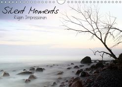 Silent Moments (Wandkalender 2019 DIN A4 quer) von Lehmann,  Heiko