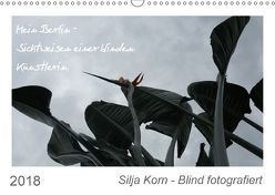 Silja Korn – Blind fotografiert (Wandkalender 2018 DIN A3 quer) von Korn,  Silja