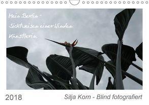 Silja Korn – Blind fotografiert (Wandkalender 2018 DIN A4 quer) von Korn,  Silja