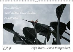 Silja Korn – Blind fotografiert (Wandkalender 2019 DIN A3 quer) von Korn,  Silja