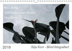 Silja Korn – Blind fotografiert (Wandkalender 2019 DIN A4 quer) von Korn,  Silja