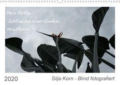 Silja Korn – Blind fotografiert (Wandkalender 2020 DIN A3 quer) von Korn,  Silja